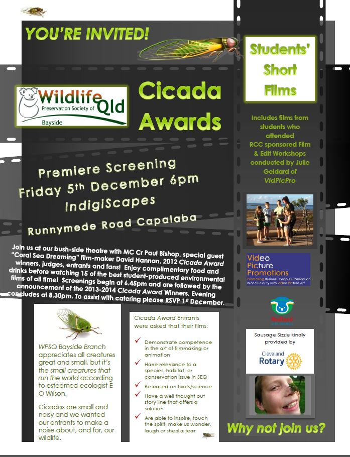 cicada-1