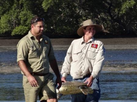 QYAC sea turtle rescue